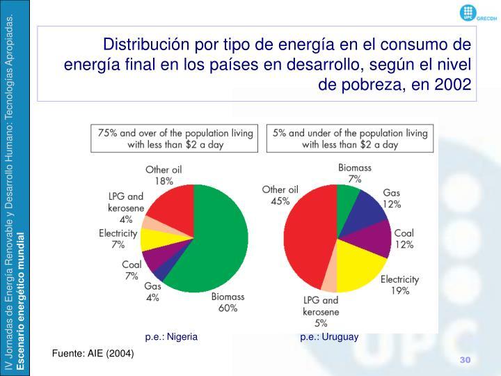 Distribución por tipo de energía en el consumo de energía final en los países en desarrollo, según el nivel de pobreza, en 2002