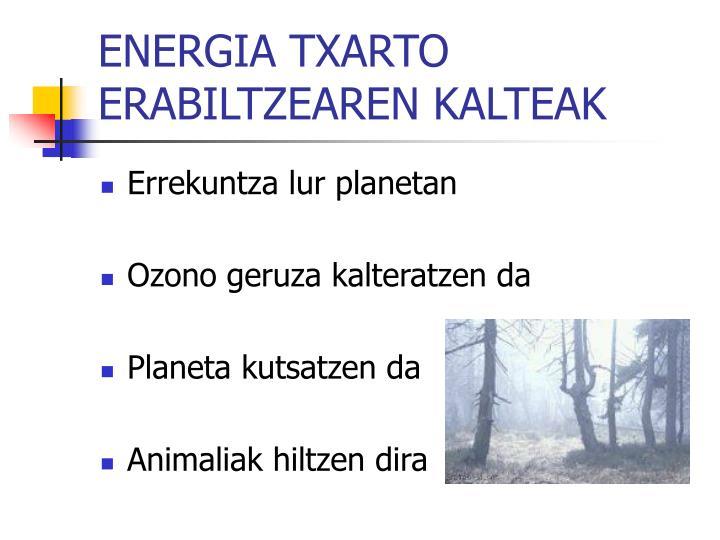 ENERGIA TXARTO ERABILTZEAREN KALTEAK