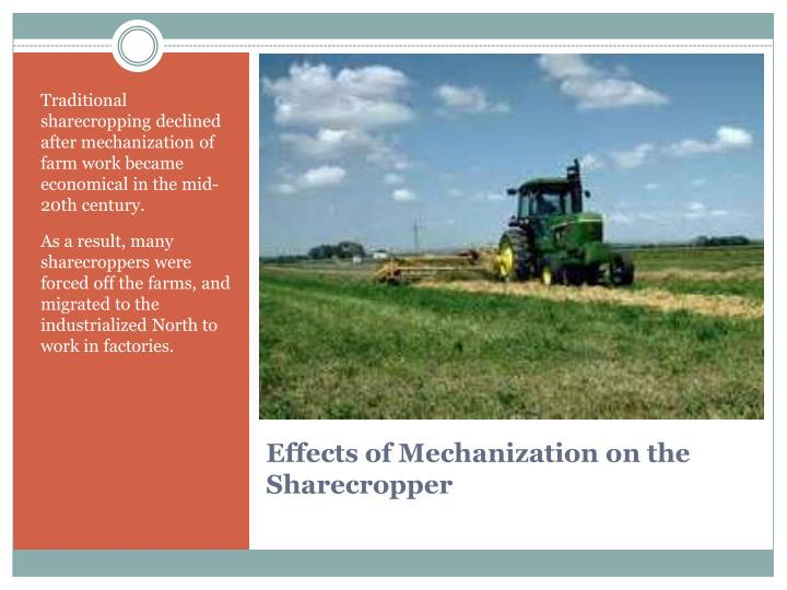 Traditional sharecropping declined after mechanization of farm work became economical in the mid-20th century.