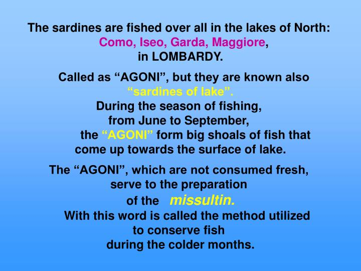 The sardines are fished over all in the lakes of North: