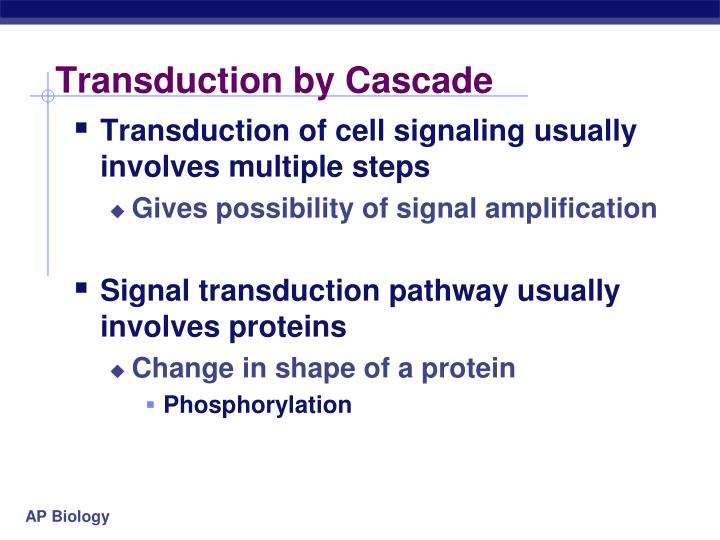 Transduction by Cascade