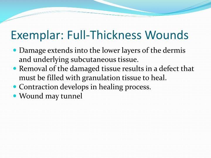 Exemplar: Full-Thickness Wounds