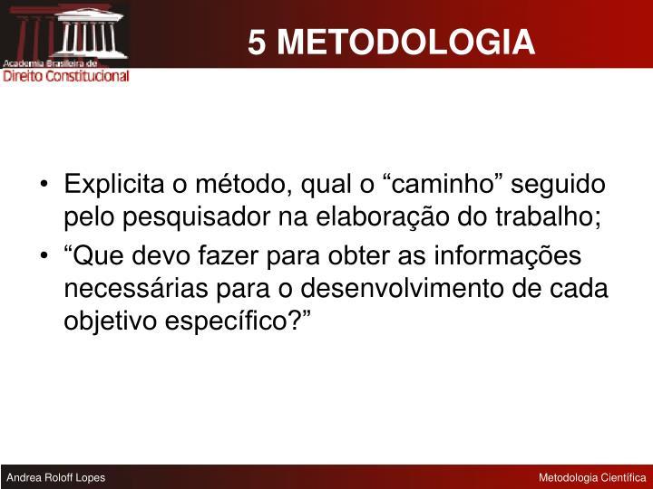 5 METODOLOGIA