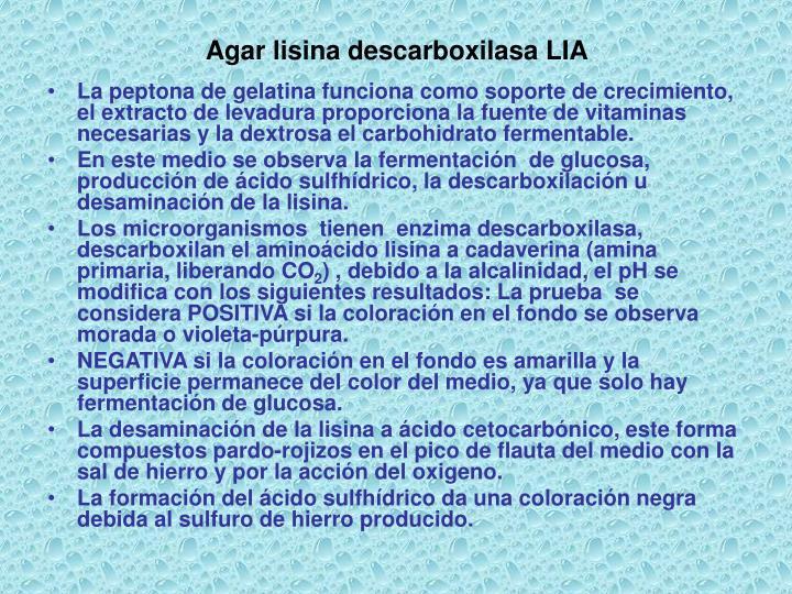 Agar lisina descarboxilasa LIA