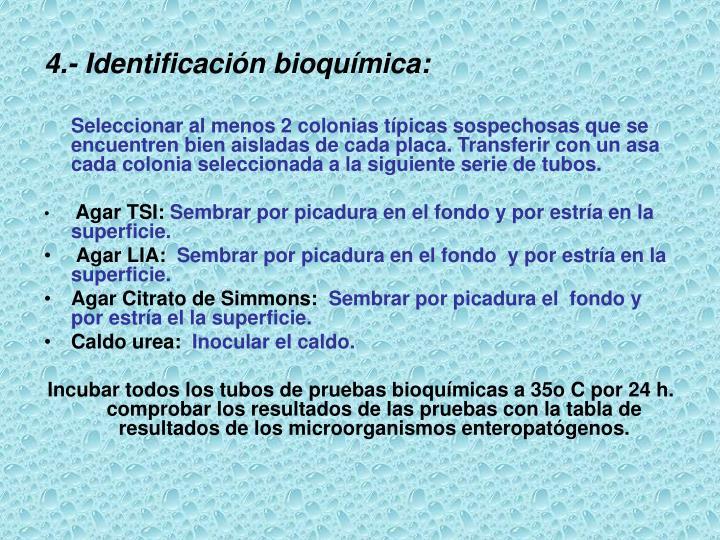 4.- Identificación bioquímica:
