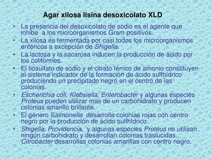 Agar xilosa lisina desoxicolato XLD