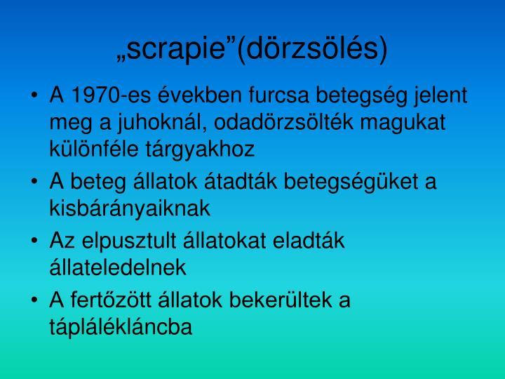 """scrapie""(dörzsölés)"