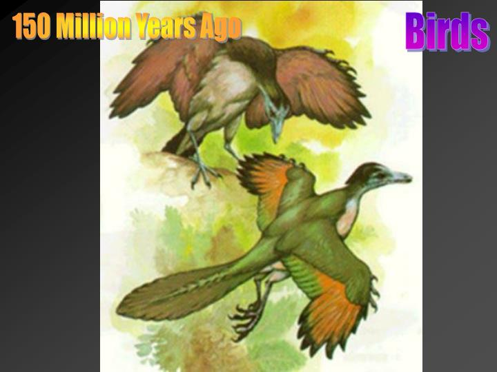 150 Million Years Ago