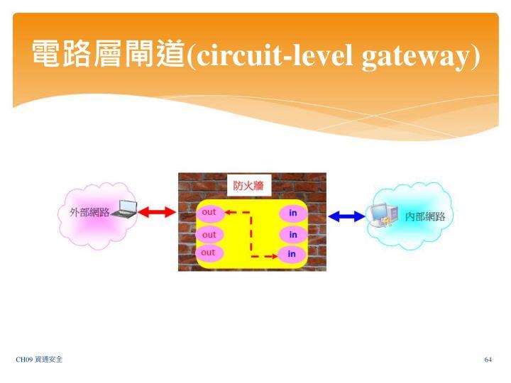 電路層閘道