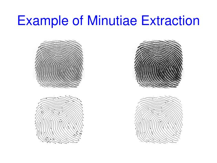 Example of Minutiae Extraction