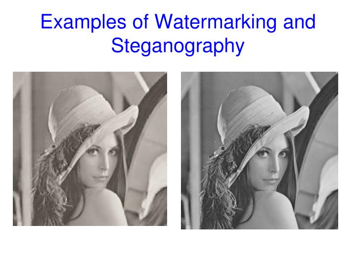 Examples of Watermarking and Steganography