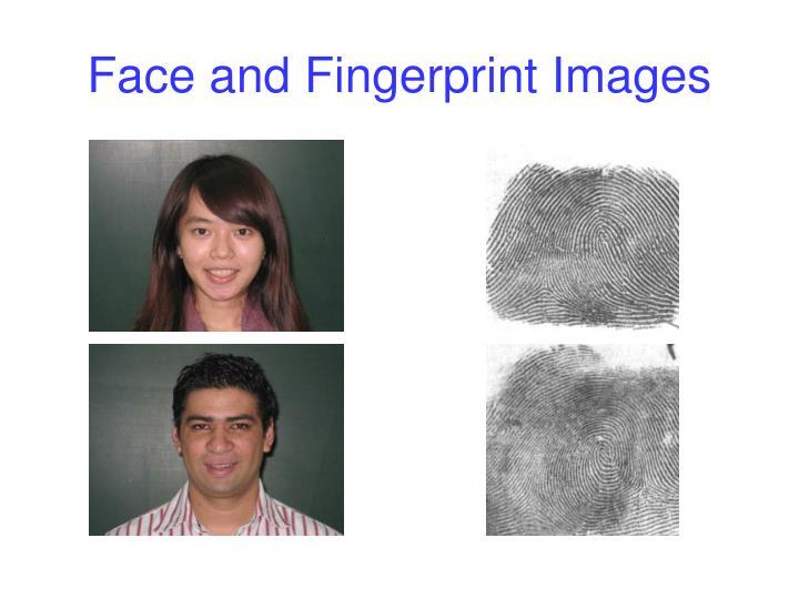 Face and Fingerprint Images
