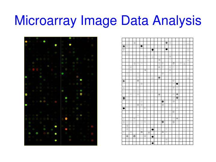 Microarray Image Data Analysis