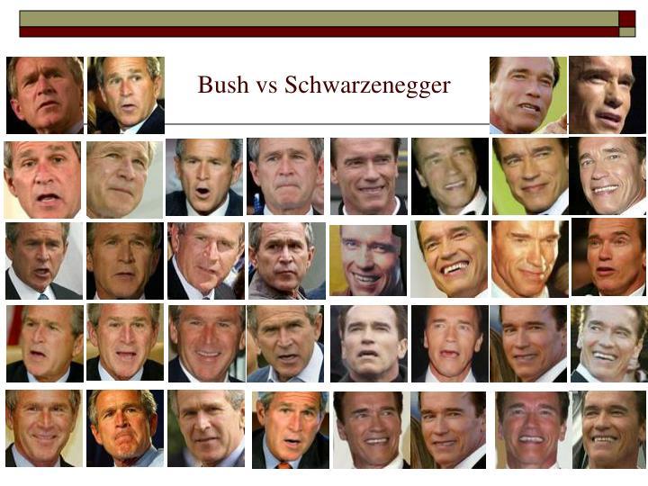 Bush vs Schwarzenegger