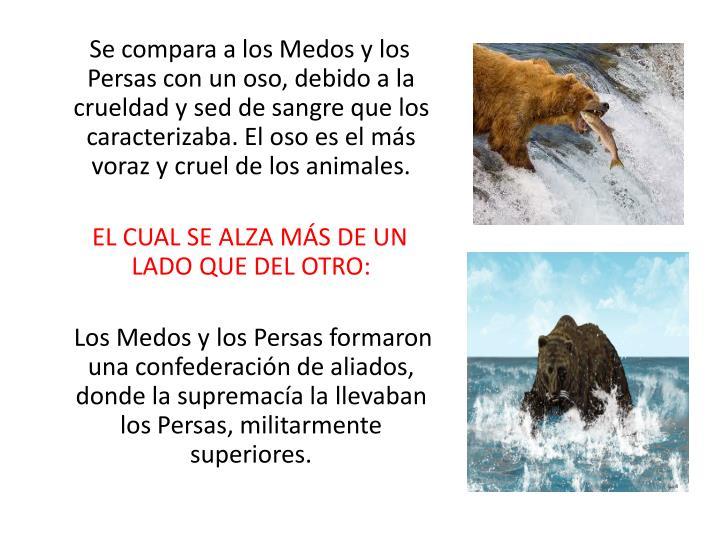 Se compara a los Medos y los Persas con un oso, debido a la crueldad y sed de sangre que los caracterizaba. El oso es el ms voraz y cruel de los animales.