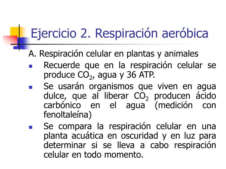 Ejercicio 2. Respiración aeróbica