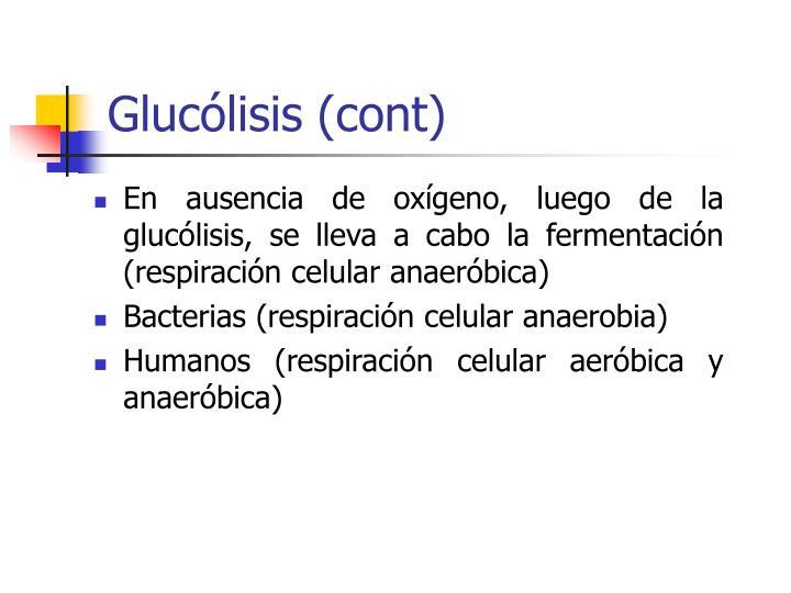 Glucólisis (cont)