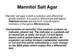 mannitol salt agar