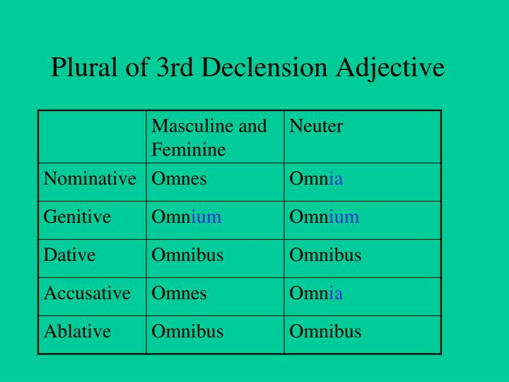 Plural of 3rd Declension Adjective