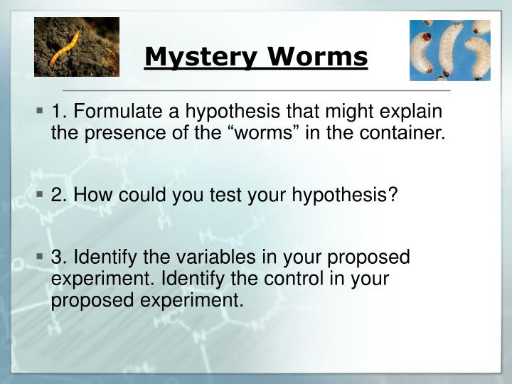Mystery Worms