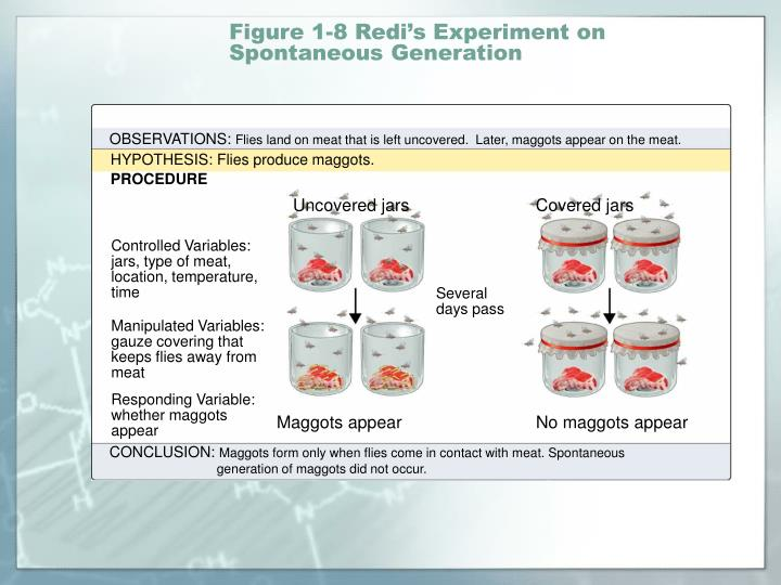 Figure 1-8 Redi's Experiment on Spontaneous Generation
