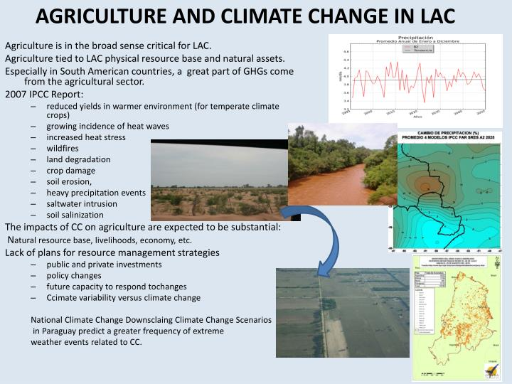 AGRICULTURE AND CLIMATE CHANGE IN LAC