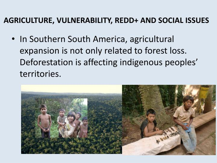 AGRICULTURE, VULNERABILITY, REDD+ AND SOCIAL ISSUES