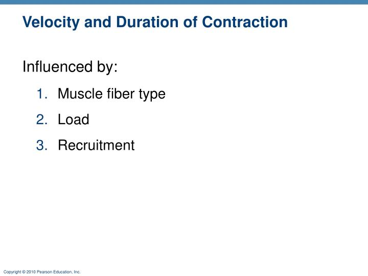 Velocity and Duration of Contraction