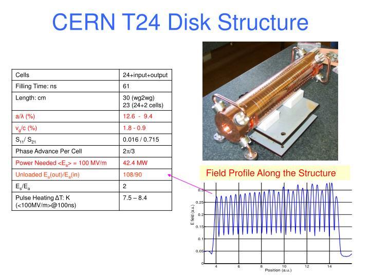 CERN T24 Disk Structure