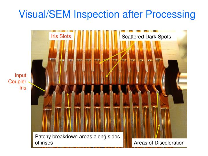 Visual/SEM Inspection after Processing