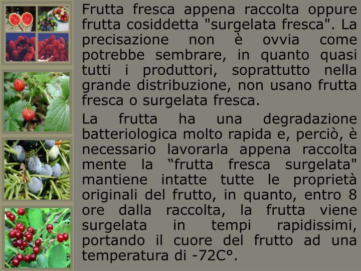 """Frutta fresca appena raccolta oppure frutta cosiddetta """"surgelata fresca"""". La precisazione non è ovvia come potrebbe sembrare, in quanto quasi tutti i produttori, soprattutto nella grande distribuzione, non usano frutta fresca o surgelata fresca."""