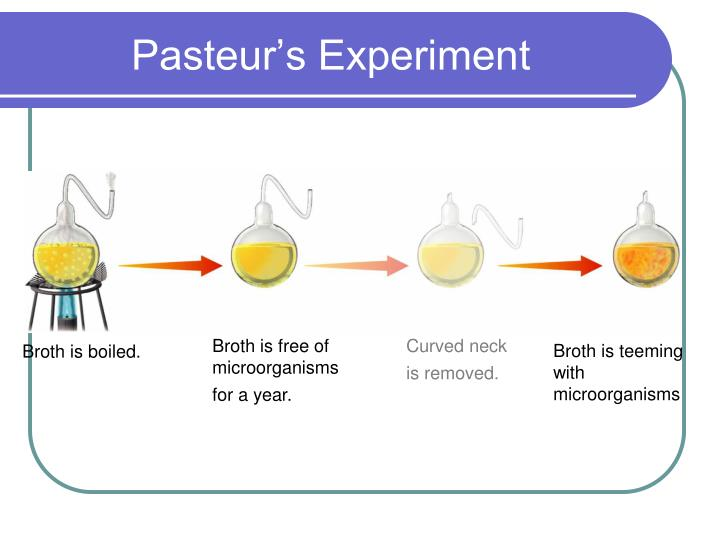 Pasteur's Experiment