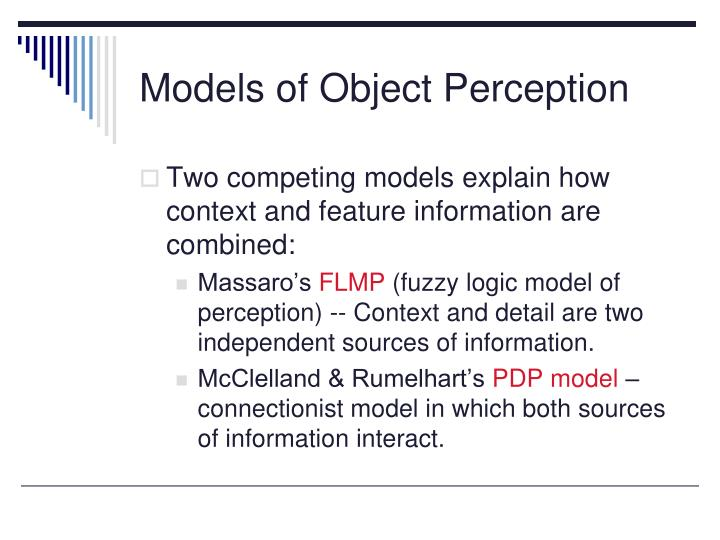 Models of Object Perception