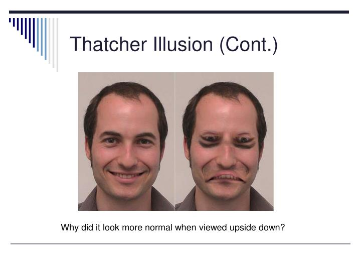 Thatcher Illusion (Cont.)