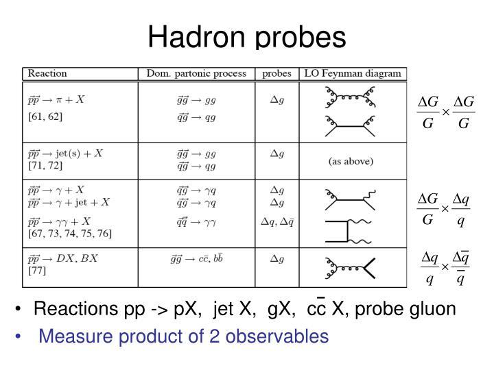 Hadron probes