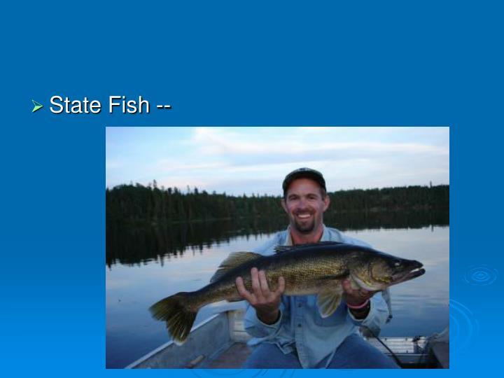 State Fish --