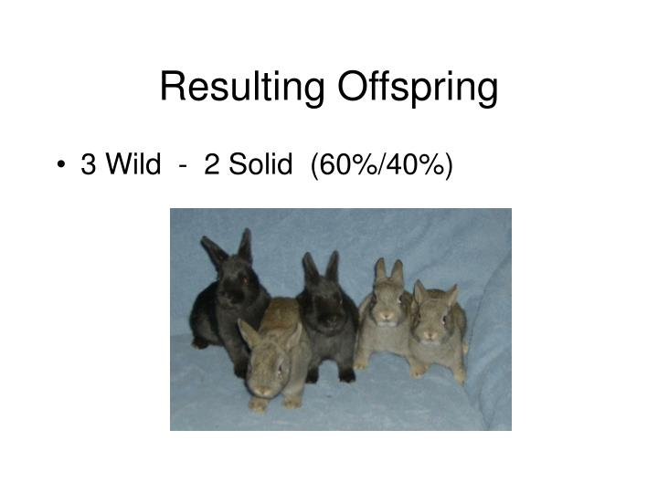 Resulting Offspring