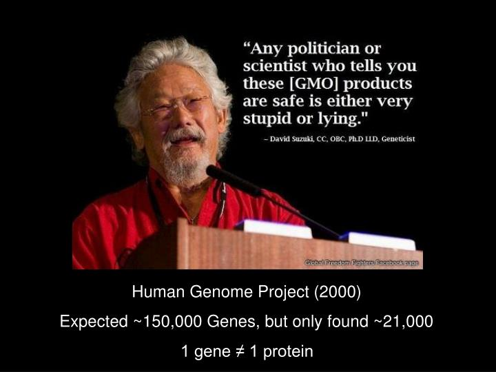 Human Genome Project (2000)