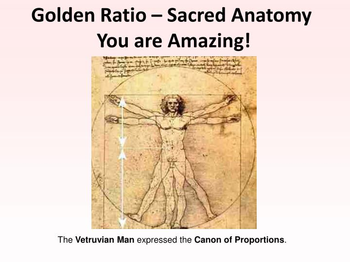 Golden Ratio – Sacred Anatomy