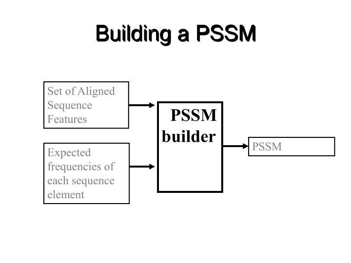 Building a PSSM