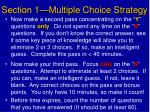 section 1 multiple choice strategy1