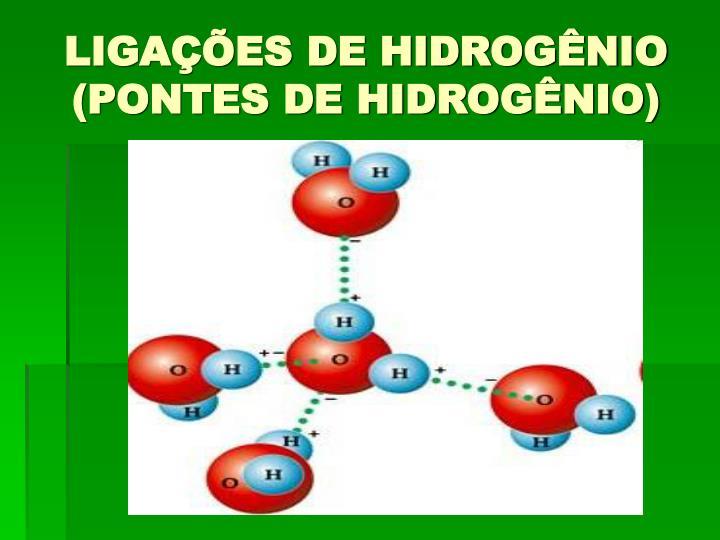 LIGAÇÕES DE HIDROGÊNIO (PONTES DE HIDROGÊNIO)