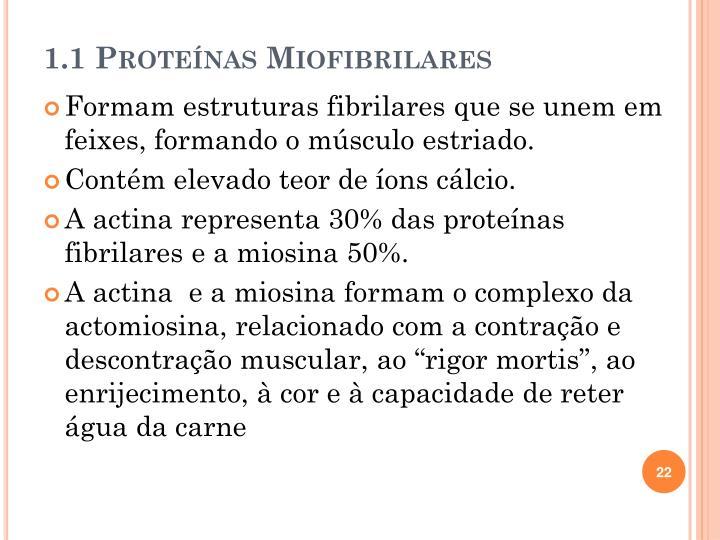 1.1 Proteínas