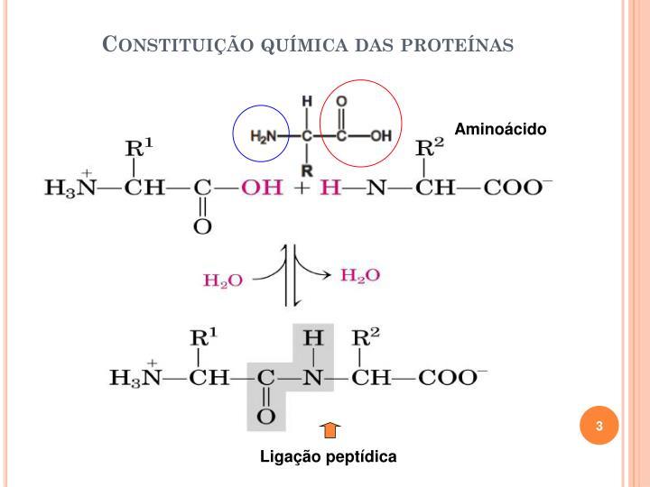 Constituição química das proteínas