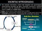 excretas nitrogenadas1