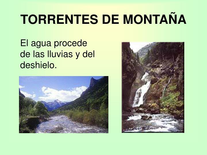 TORRENTES DE MONTAÑA