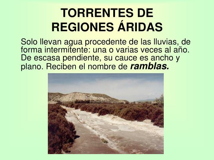 TORRENTES DE