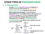 other types of photoshythesis
