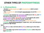 other types of photoshythesis1