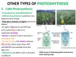 other types of photoshythesis2